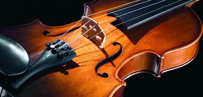 One of Stentor's beautiful violins